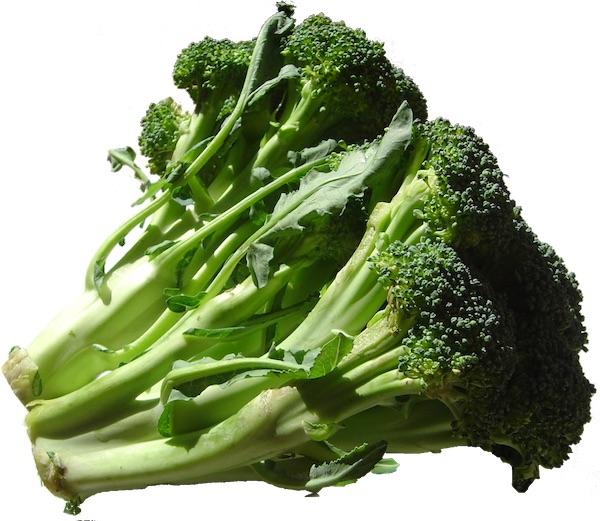 Broccoli_DSC00862.jpg
