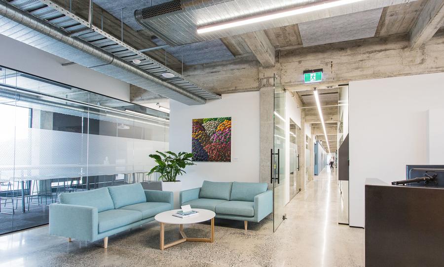 Neon Hive: Digital Agency Hamilton, NZ | Website Design