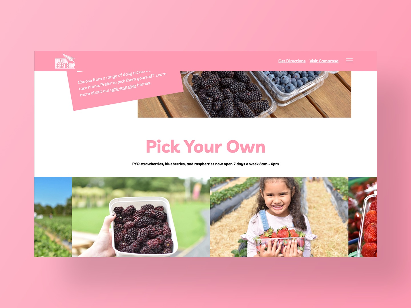 Ruakura Berry Shop Website Design by Neon Hive