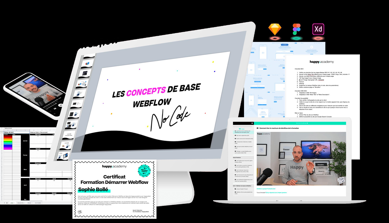 Webflow Expert