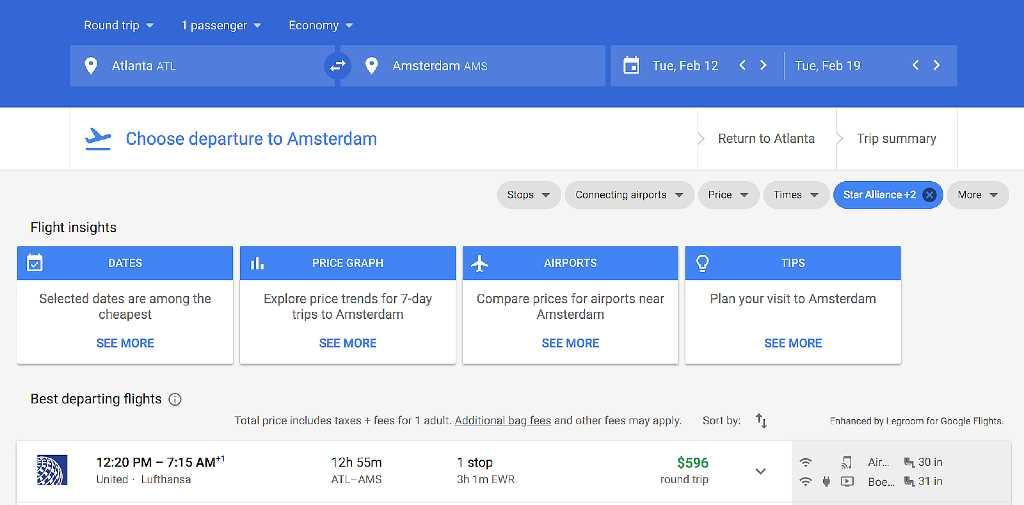 search in Google Flights
