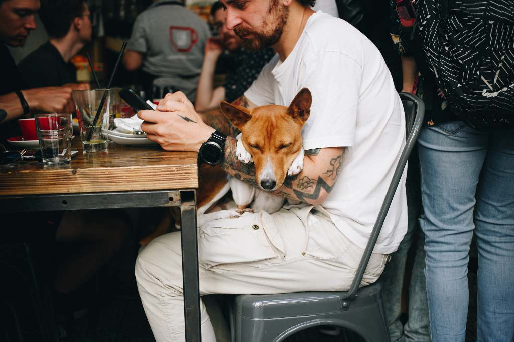 man on phone at cafe, with small dog in his lap.