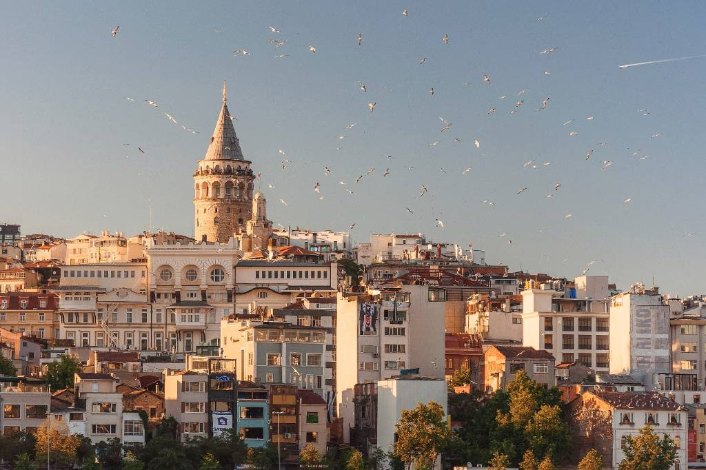 view of Istanbul hilltop with birds
