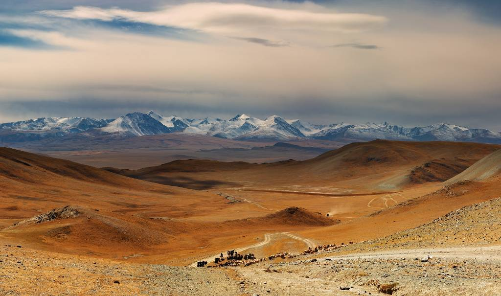 landscape of Mongolia.