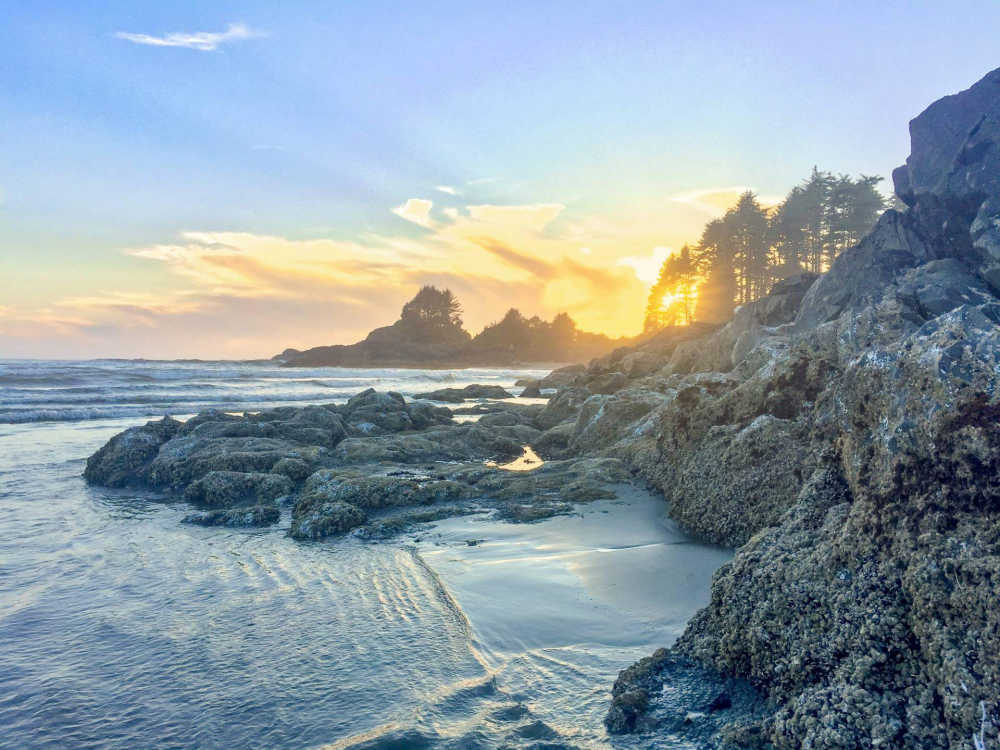 rocky seashore on Vancouver Island.