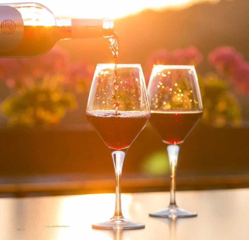 wine tasting near San Miguel de Allende.