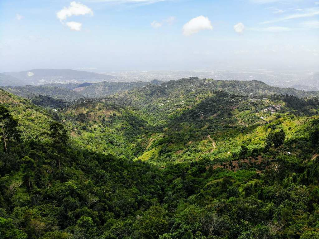 Jamaica's blue mountains.