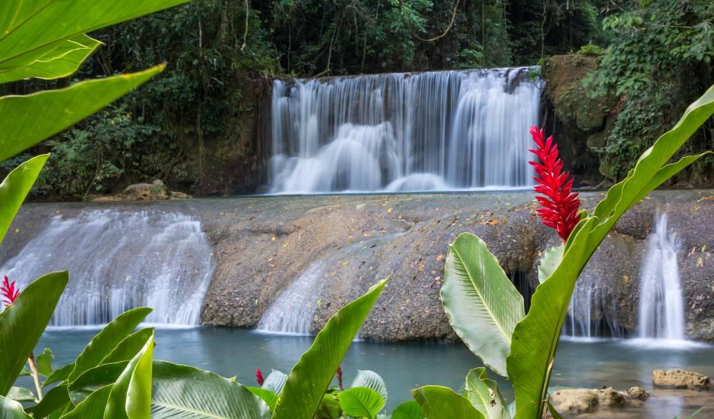 Reach Falls, Jamaica.