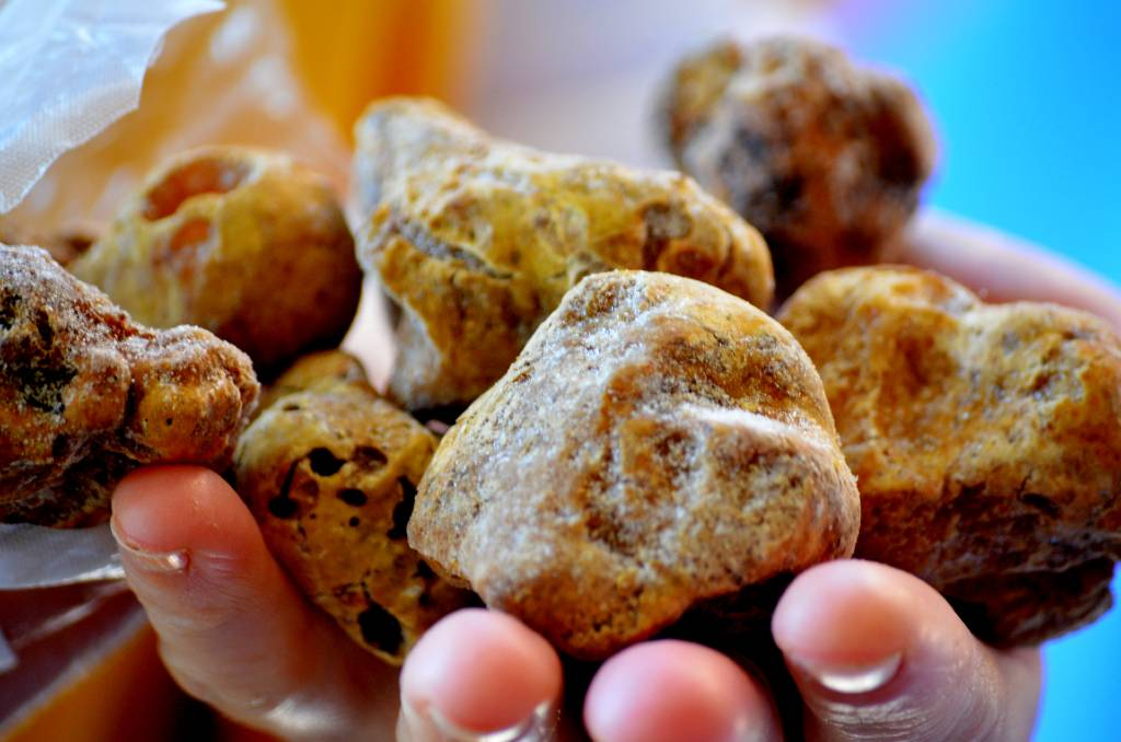 Istrian white truffles.