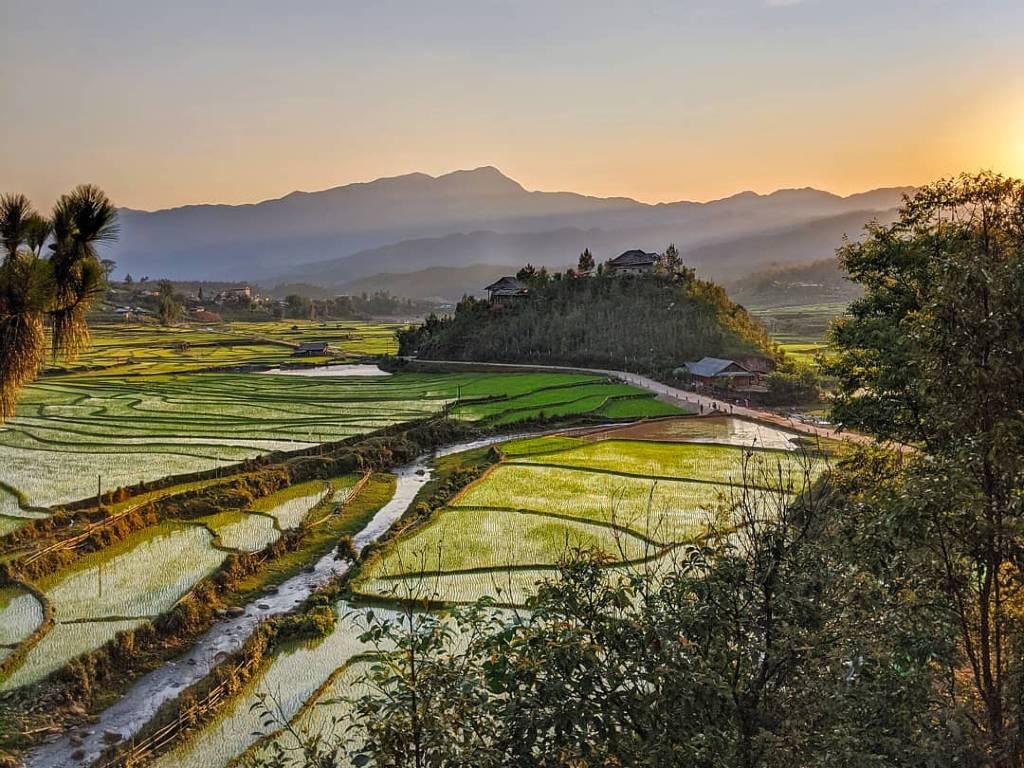 Mù Cang Chải rice terraces