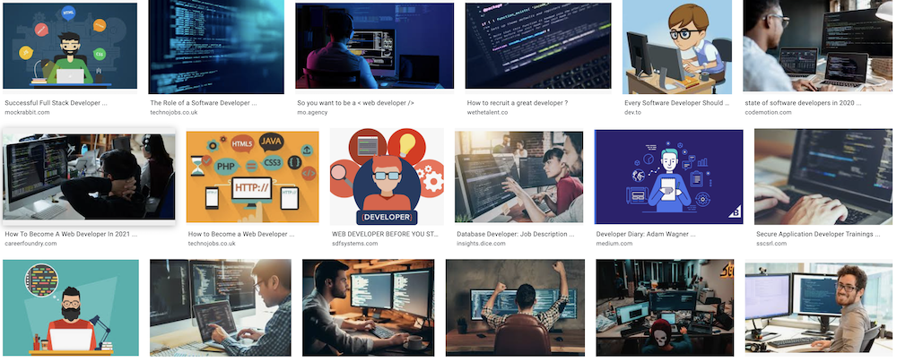 Image search results for developer