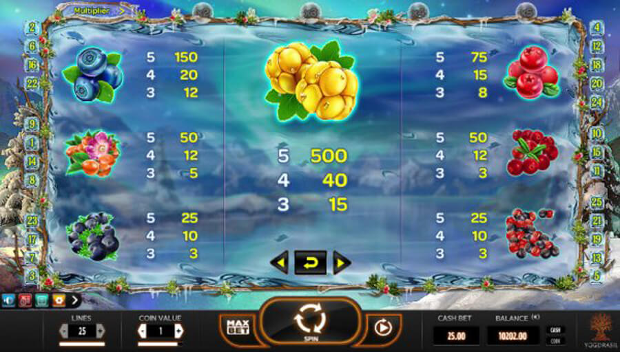 Winterberries slot paytable