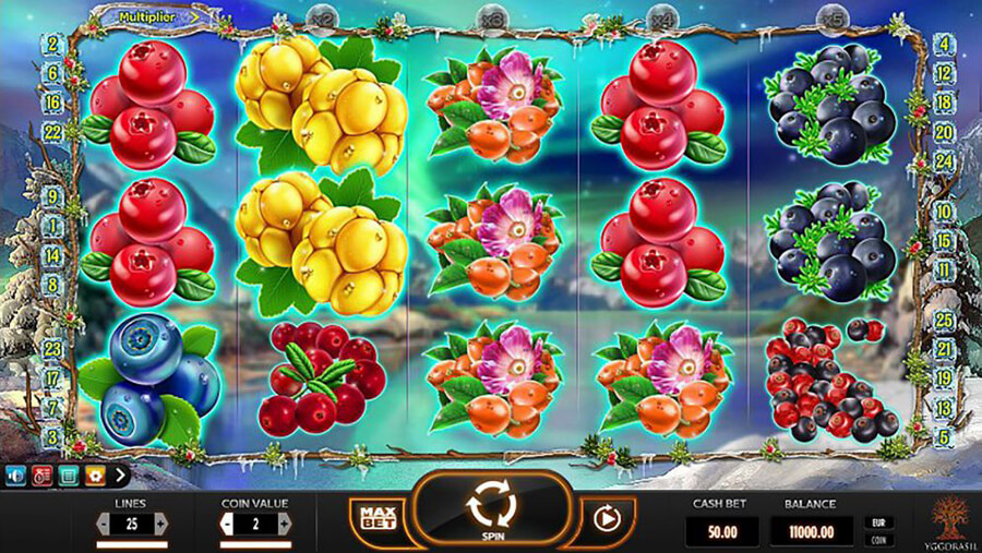 Winterberries slot review