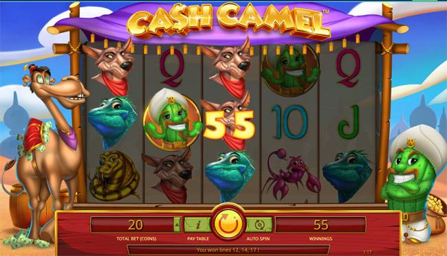 Cash Camel slot iSoftBet