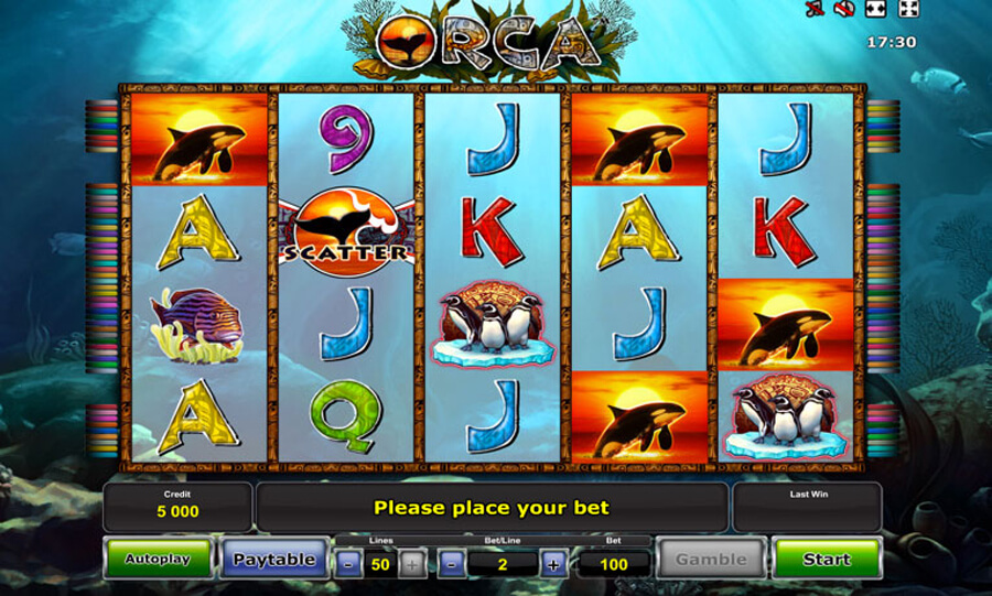 Orca slot review