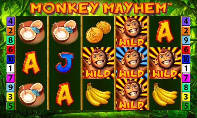 Monkey Mayhem slot by Merkur Gaming