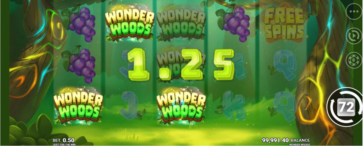Wonder Woods Slot Gamepaly