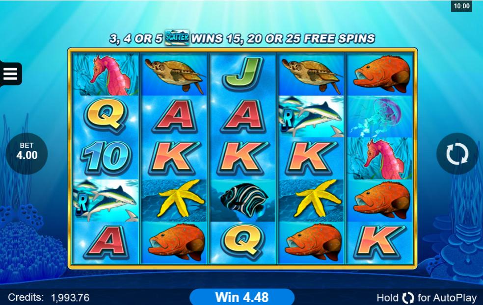 Dolphin Coast slot gameplay