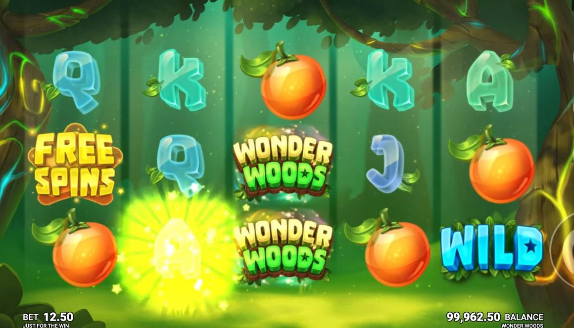 wonder-woods-slot-gameplay