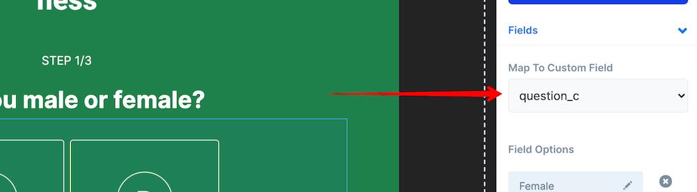 Custom field mapping option