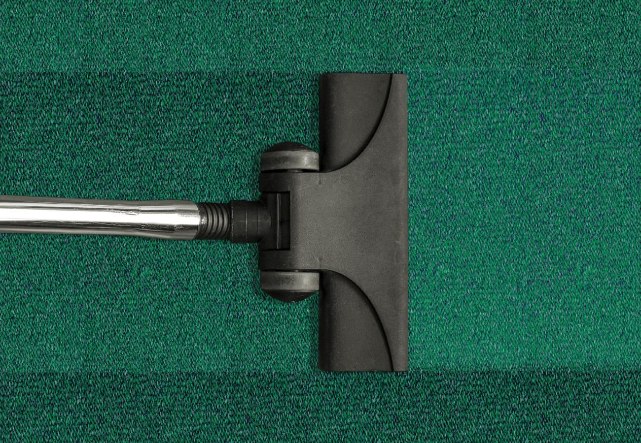 vacuum head vacuuming green carpet