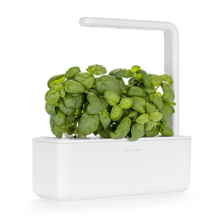 self-growing mini indoor herb garden