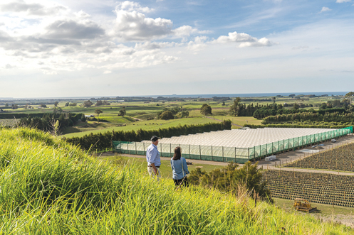 At the forefront of innovation, Orchard Managers overseeing G3 Kiwifruit Orchard Construction