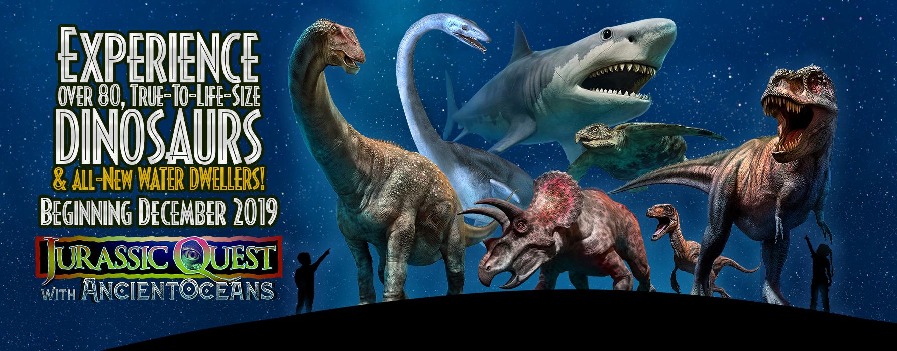 Ancient Oceans Image