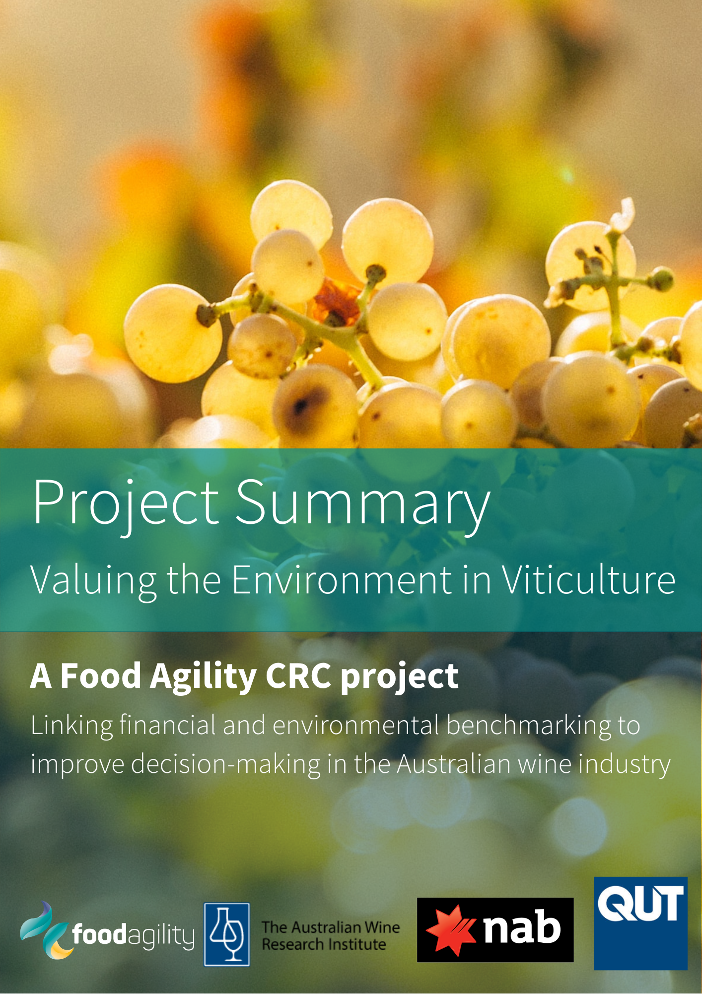 Project Summary Valuing the Environment in Viticulture