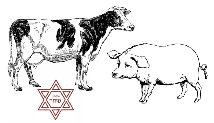 The Animal Laws Before Kashrut: A System of Purity