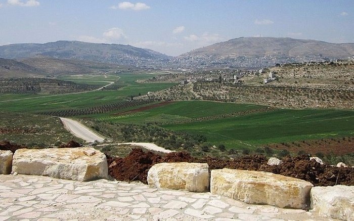 An Altar on Mt Ebal or Mt Gerizim: The Torah in the Sectarian Debate