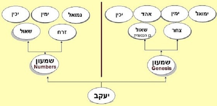 What Do Genealogies Teach Us About Torah?