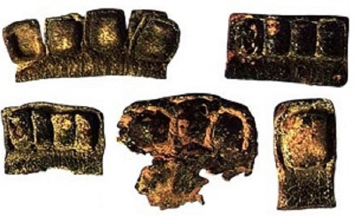 What will the Newly Found Tefillin Scrolls Reveal?