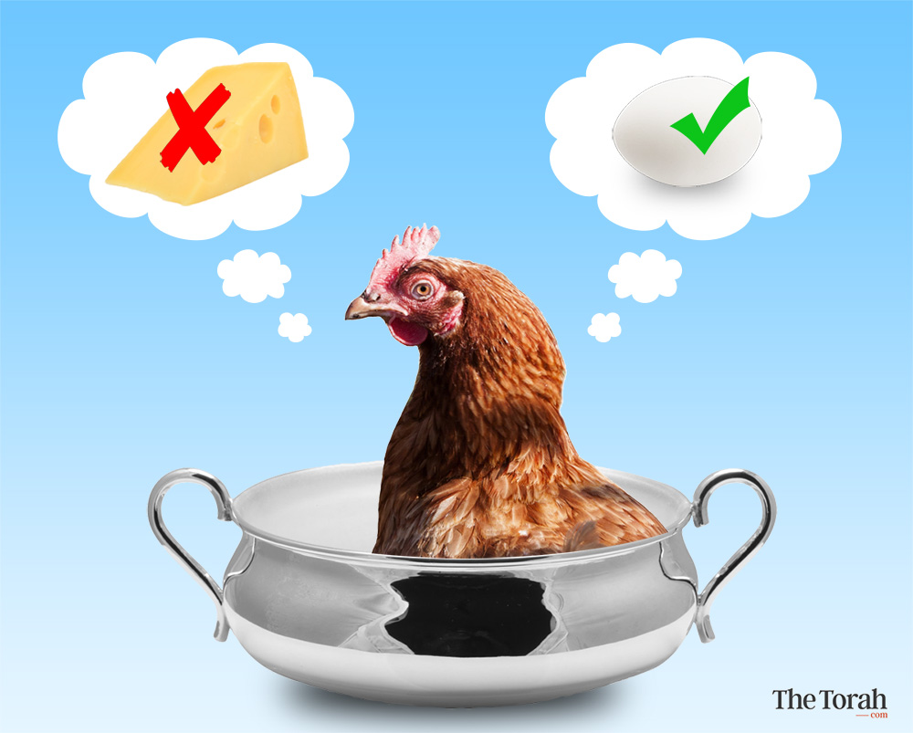 Why Chicken and Cheese Became Prohibited