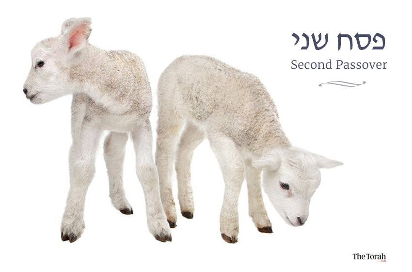 The Paradox of Pesach Sheni