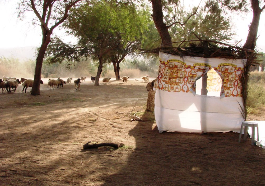 How and Why Sukkot Was Linked to the Exodus