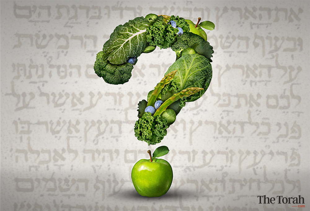 Did God Originally Intend the World to Be Vegetarian?