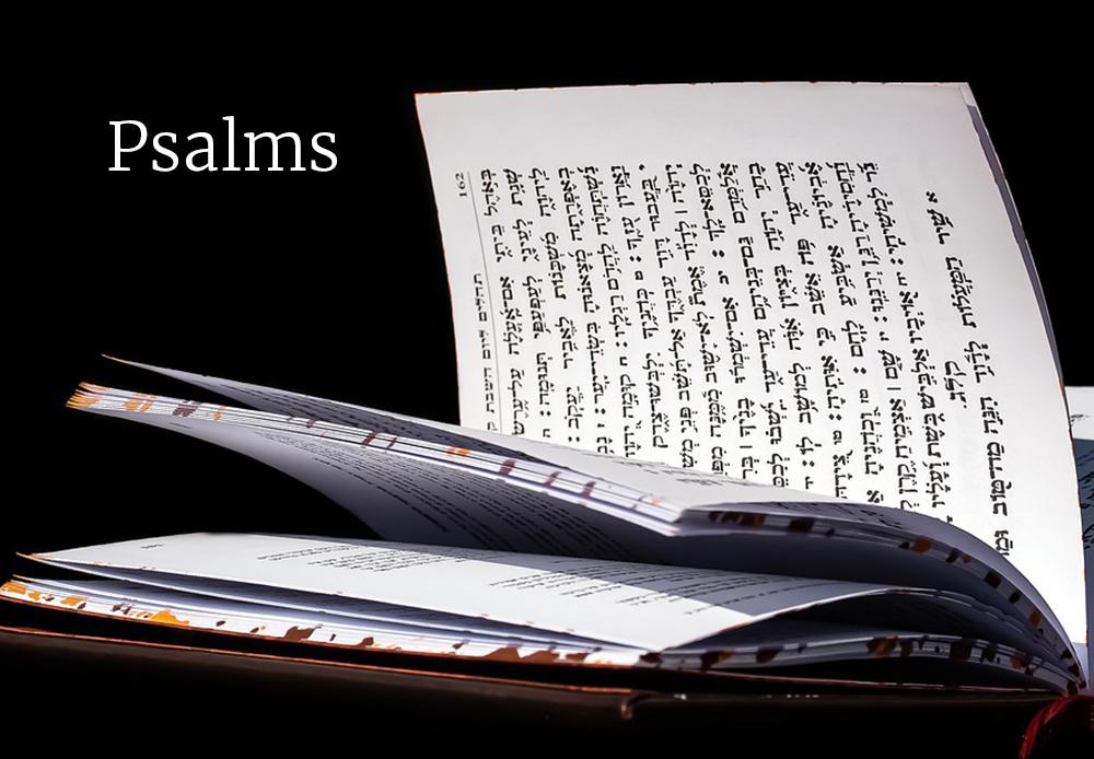 Seeking Torah, Seeking God: Psalm 119