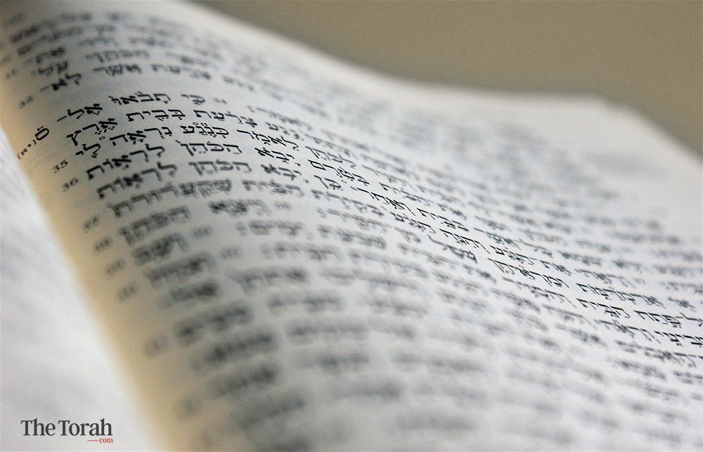 Priests & Rabbis Determine Ritual Reality