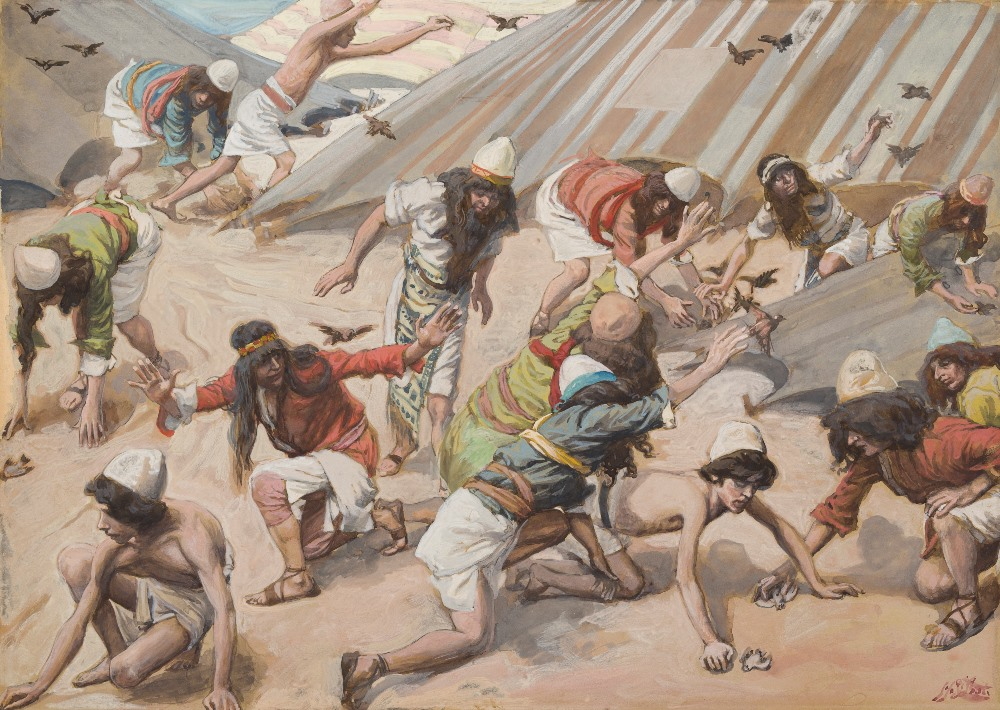 Were the Israelites Craving for Meat or Starving for Food?