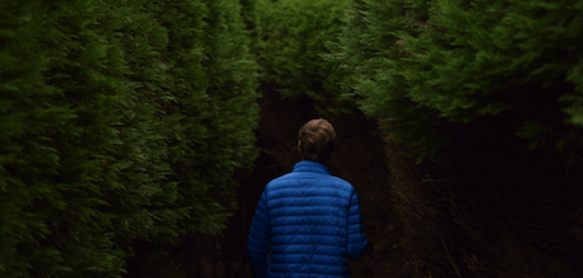 Image of a person walking into densely populated bushes