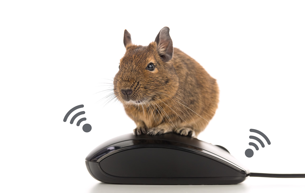 """マウスはセンサーのかたまり!IoTセンサーのしくみと選び方 〜 IoTエッジウェア""""Gravio""""で提供される無償貸出センサーの電波到達距離と複数センサー(10台)の同時接続もセットで試してみた〜"""
