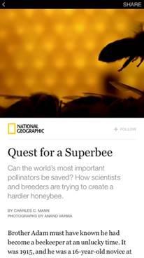 Instant Article screenshot