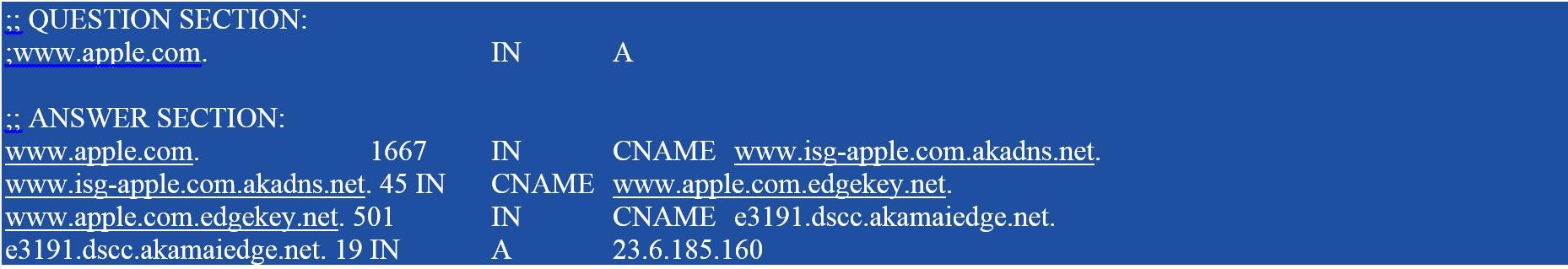 DIG apple.com
