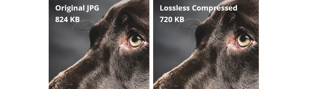lossless-comparison-photos