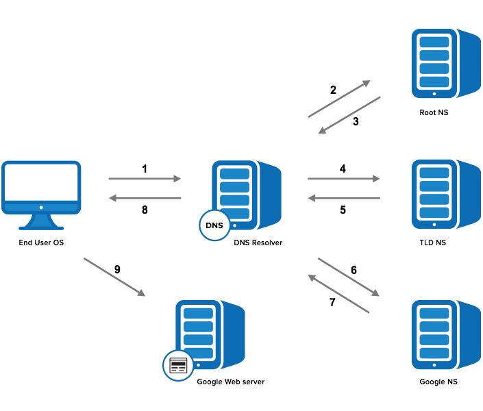 DNS Performance diagram