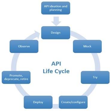 API Lifecycle
