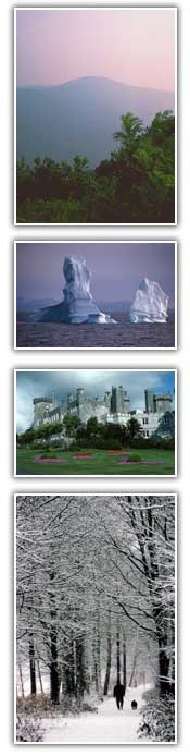 Pictures of different seasons