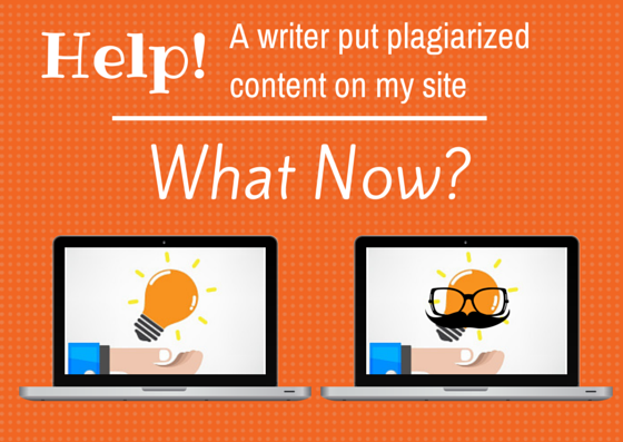 writer plagiarized content, what now?