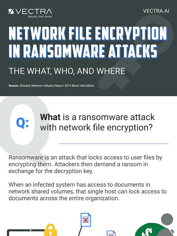 2019 Ransomware Infographic